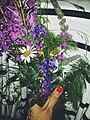 Field flowers - 2015.jpg