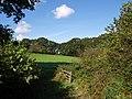 Field near Totleigh Barton - geograph.org.uk - 576779.jpg
