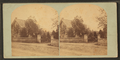 Filadelphia vicinity, from Robert N. Dennis collection of stereoscopic views 3.png