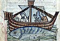 Fish and ship from Aspidochelone - Danish Royal Library.jpg