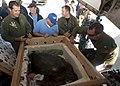 Flickr - Official U.S. Navy Imagery - Sailors evacuate an injured sea turtle.jpg