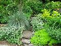 Flickr - brewbooks - Our Garden (27).jpg