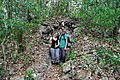 Flickr - ggallice - Geoff and Constance, Maya Biosphere Reserve.jpg