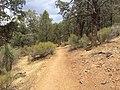 Flinders Ranges SA 5434, Australia - panoramio (193).jpg