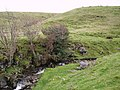 Flinter Gill - geograph.org.uk - 277742.jpg