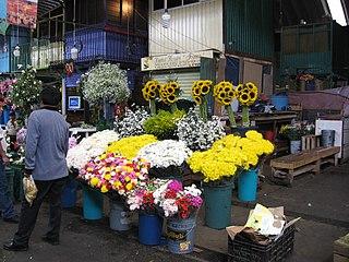 Mercado Jamaica Traditional public market in Mexico City
