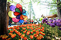 Flower street- Goyang International Flower Festival (4559525851).jpg