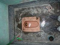 Flush toilet (5933719710).jpg