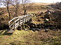 Footbridge over Threestone Burn. - geograph.org.uk - 384624.jpg