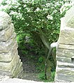 Footpath - Kell Lane, Northowram - geograph.org.uk - 825274.jpg