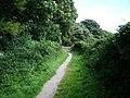 Footpath - geograph.org.uk - 523864.jpg
