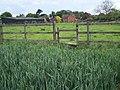 Footpath Past Manor Farm, Mavesyn Ridware - geograph.org.uk - 445376.jpg