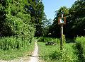 Forêt de la Robertsau-Piste cavalière.jpg