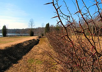 Fort Loudoun (Tennessee) - The outer defenses of Fort Loudoun, with fascine wall and ditch planted with honey locust shrubs