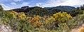 Fossil Springs Trail (November 13, 2017) (26675499019).jpg