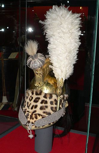 Dragoon helmet - A French dragoon officer's helmet.