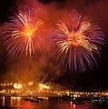 Fuegos artificiales 2013 - panoramio (11).jpg
