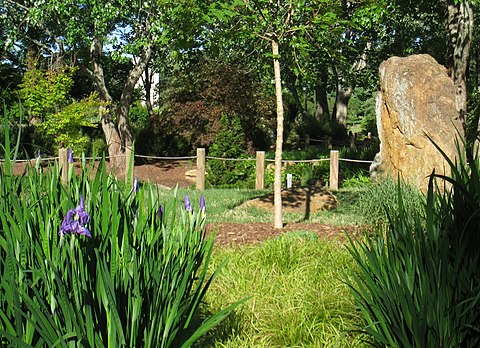 Furman University Asian Garden - Wikiwand