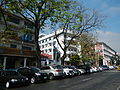 FvfMendiolaStreet697.JPG