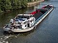 GMS Danube Lion in Bamberg 0267.jpg