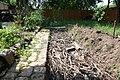 Garden, 12 Apr 2012 (6925991616).jpg