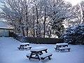 Garden in winter - panoramio.jpg