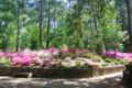 Gardens25.jpg
