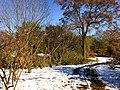 Georgia snow IMG 5435 (38082615875).jpg