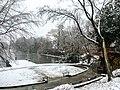 Georgia snow IMG 8045 (24059497597).jpg