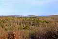 Gfp-missouri-taum-sauk-state-park-looking-across-the-valley.jpg