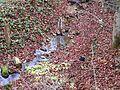 Giessen Grafstal2.jpg