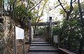 Gifu Castle , 岐阜城 - panoramio (1).jpg