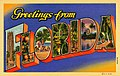 Greetings From Florida, blue and orange background (NBY 9436).jpg