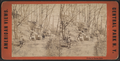 Group in Central Park, from Robert N. Dennis collection of stereoscopic views 2.png