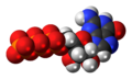 Guanosine-triphosphate-anion-3D-spacefill.png