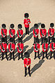 Guardsmen on Parade MOD 45155722.jpg