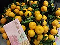 HK KT 觀塘 Kwun Tong view 觀點中心 lift lobby Lunar New Year flowers January 2019 SSG 03 yellow fruit.jpg