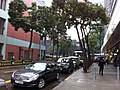 HK TST East 加連威老道 Granville Road 東海中心 East Ocean Centre sidewalk carpark n trees Nov-2012.JPG