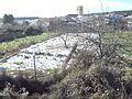 HORTS. ARAS DE LOS OLMOS, VALÈNCIA 08.jpg