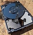 HP 146GB 10KRPM SAS HDD Interior - 51054136331.jpg