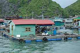 Ha Long Bay, floating village.jpg