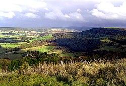 Hambleton Hills - geograph.org.uk - 165475.jpg