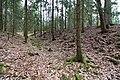 Heidetraenk-Oppidum-JR-E-3764-2020-04-04.jpg