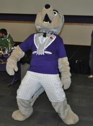 University Of Washington Huskies >> Hendrix the Husky - Wikipedia