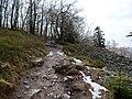 Hiking trail at northeast of the Altkönig.jpg