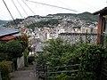 Hills of Nagasaki - panoramio.jpg
