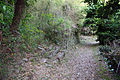 Hiromine-jinja by CR 55.jpg