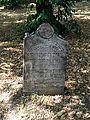 Hoješín G. Židovský hřbitov.jpg