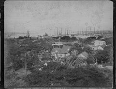 Honolulu, from Government Building, photograph by Frank Davey (PPWD-8-8-016).jpg