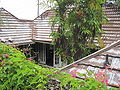 Honolulu-PatyDr3114-courtyard.JPG
